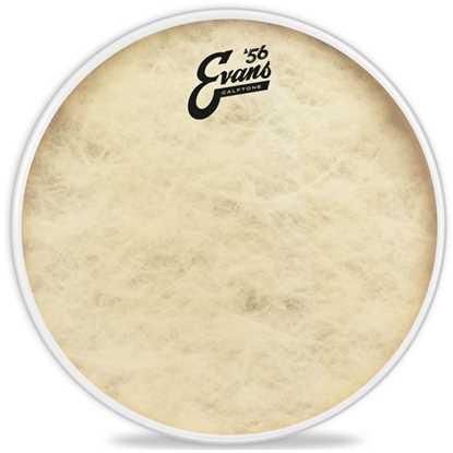 Evans Calftone Snare