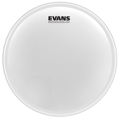 "Evans UV1 8"" Coated"