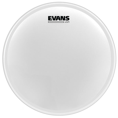 "Evans UV1 24"" Coated Bass"