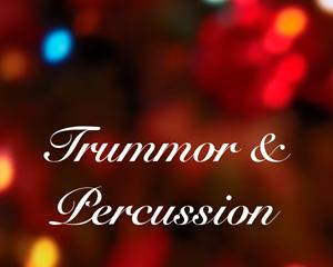 Bild för kategori Trummor, Percussion och Cymbaler