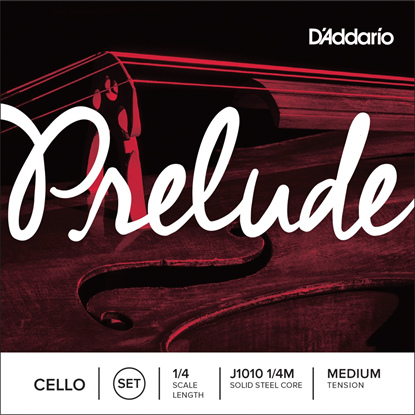 D'addario Prelude J1010 1/4M