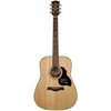 Richwood D-40 Master Series Handmade Dreadnought Guitar