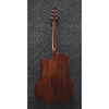 Ibanez AAD170CE Natural Low Gloss