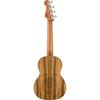 Fender Dhani Harrison Ukulele Turquoise