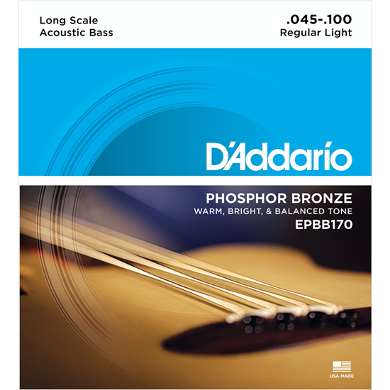 D'Addario EPBB170 Long Scale Acoustic Bass