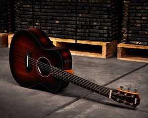 Bild för kategori Taylor GS Mini