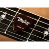 Taylor Celluloid 351 Guitar Picks Tortoise Shell 0,71 mm 12-Pack