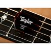 Taylor Premium 346 Thermex Pro Guitar Picks Tortoise Shell 1,5 mm 6-Pack