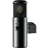 Warm Audio WA-8000 Tube Condenser Microphone