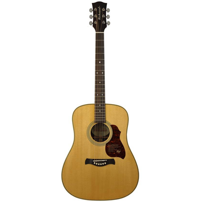 Richwood D-65-VA Master Series Handmade Dreadnought Guitar