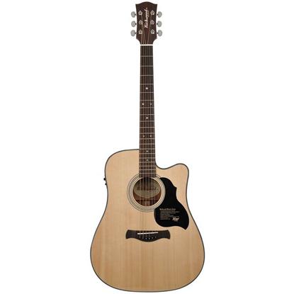 Richwood D-40-CE Master Series Handmade Dreadnought Guitar